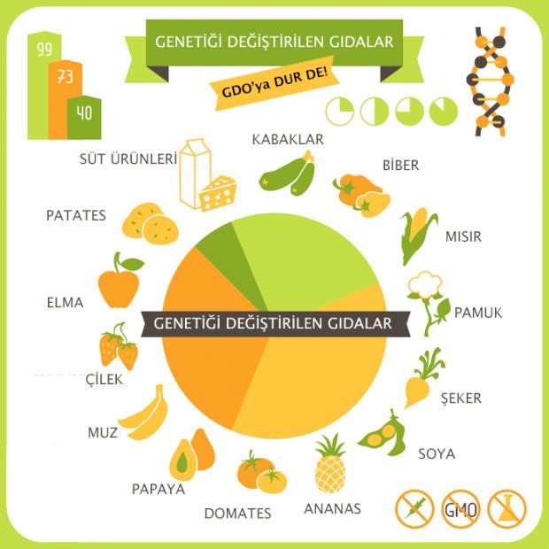 Genetiği en çok değiştirilen yiyecekler ve global oranları.