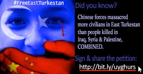 Banner for the East Turkestan Petition