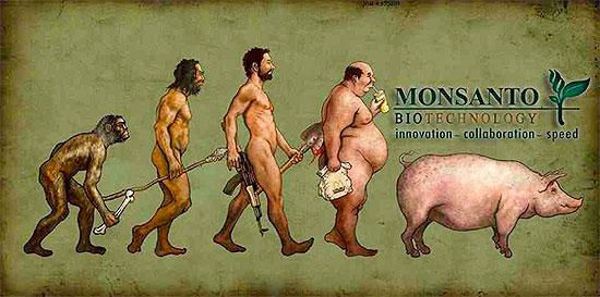 Monsanto ürünleri açısından insanlığın evrimi.